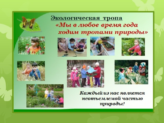 год экологии в детском саду приеме